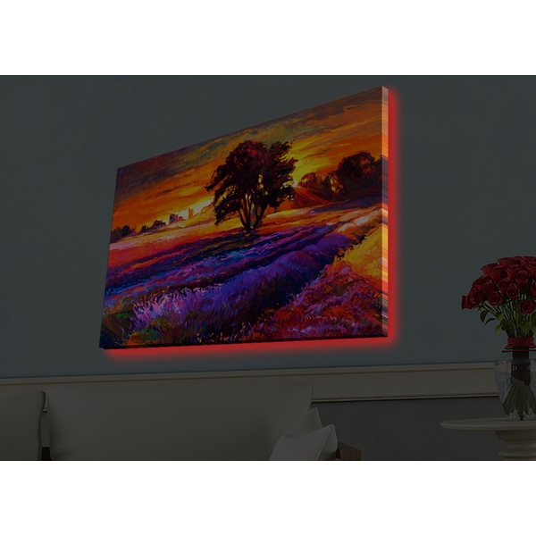 4570HDACT-038 Multicolor Decorative Led Lighted Canvas Painting