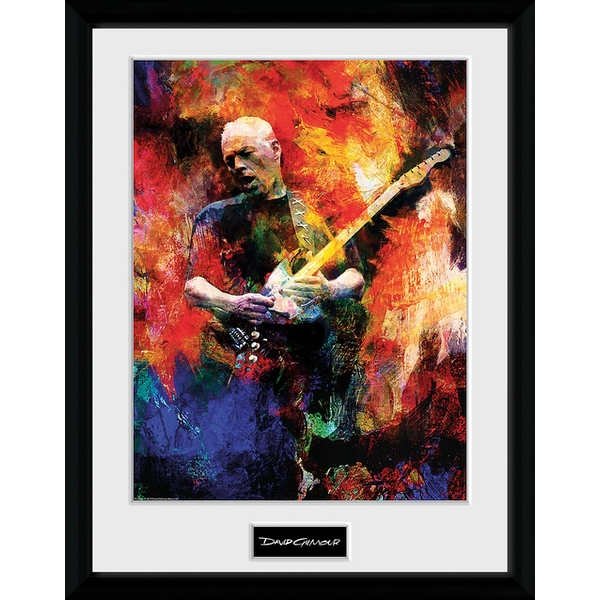 David Gilmour - Painting Collector Print