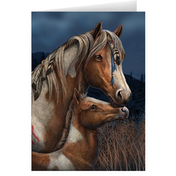 Pack of 6 Apache Cards By Lisa Parker