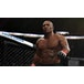 EA Sports UFC 2 PS4 Game [German Version] - Image 2