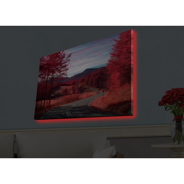 4570HDACT-065 Multicolor Decorative Led Lighted Canvas Painting