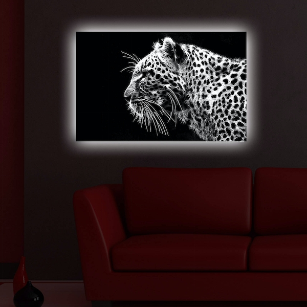 4570DACT-44 Multicolor Decorative Led Lighted Canvas Painting