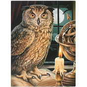 Small The Astrologer Canvas Picture by Lisa Parker