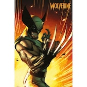 Marvel Extreme Wolverine Maxi Poster