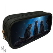 Wish Upon a Star 3D Pencil Case
