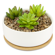 Ceramic Planter & Bamboo Base | M&W Round New