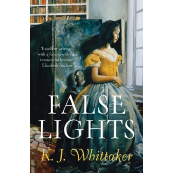 False Lights Paperback