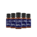 Mystic Moments Favourite Essential Oils Gift Starter Pack (Eucalyptus Blue Gum, Lavender, Orange Sweet, Patchouli, Tea Tree) - Image 2
