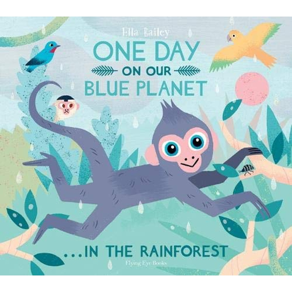 One Day on our Blue Planet: In the Rainforest (Paperback)   Paperback / softback 2019
