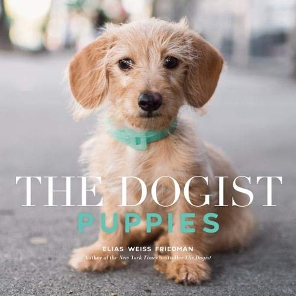 The Dogist Puppies  Paperback / softback 2018