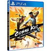 Cobra Kai The Karate Saga Continues PS4 Game