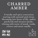 Charred Amber (Pastel Collection) Country Candle Wax Melt - Image 4