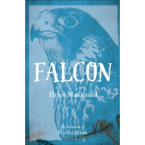 Falcon by Helen Macdonald (Paperback, 2016)