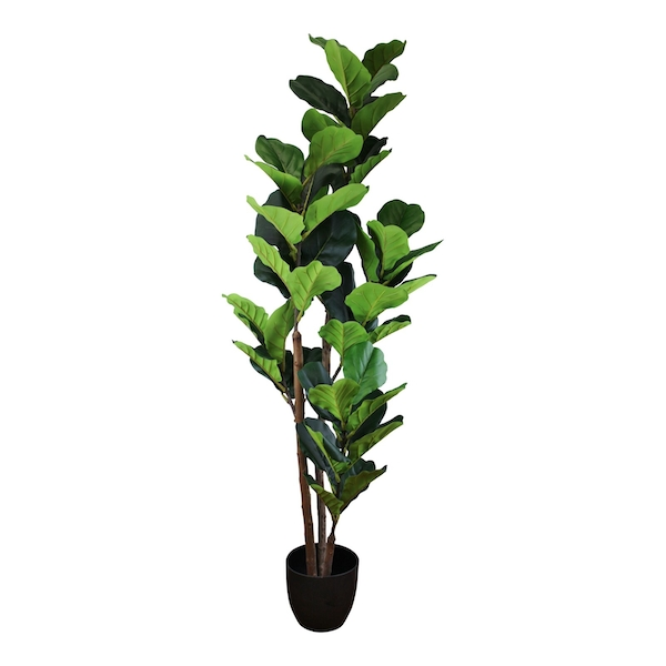 Artificial Fiddle Leaf Fig Tree 150cm