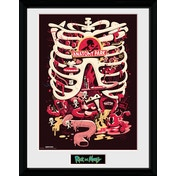 Rick and Morty Anatomy Park Framed Collector Print