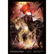Overlord, Vol. 9 The Caster of Destruction Hardcover (light novel)