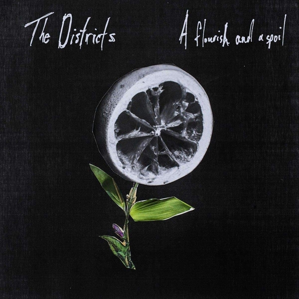 The Districts - A Flourish And A Spoil Vinyl