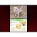 Nintendogs Dalmatian & Friends Game DS - Image 3