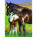 Momma and Colt 100 Piece Jigsaw Puzzle - Image 2