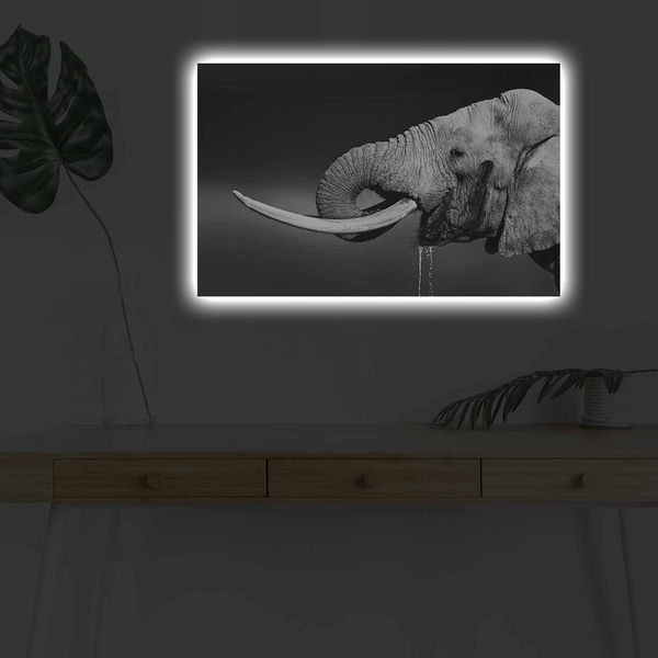 4570DHDACT-165 Multicolor Decorative Led Lighted Canvas Painting