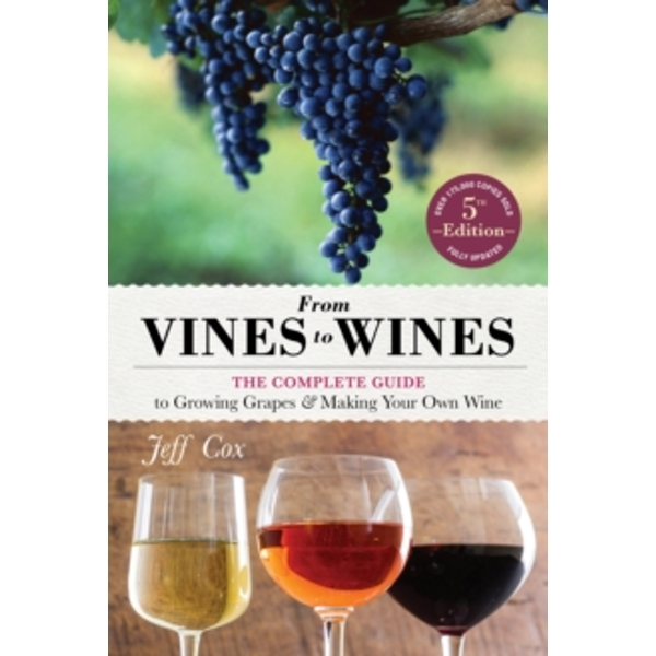 From Vines to Wines Paperback