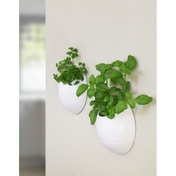 Thumbs Up Eco Pod Self-Watering Herb Pot White