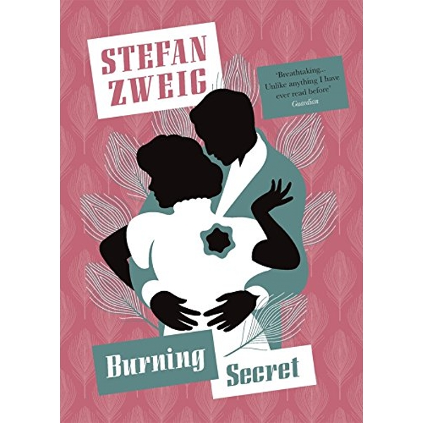 Burning Secret by Stefan Zweig (Paperback, 2017)