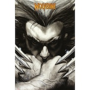 Marvel Extreme Wolverine Claws Maxi Poster
