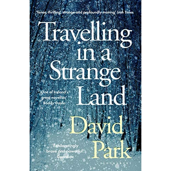 Travelling in a Strange Land Winner of the Kerry Group Irish Novel of the Year Paperback / softback 2018