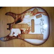 Band Hero Taylor Swift Guitar Faceplate Wii