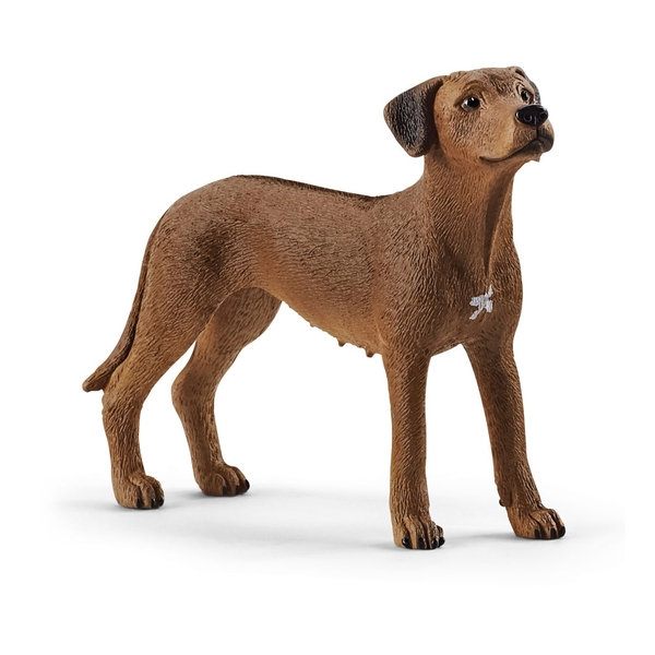 Schleich Farm World - Rhodesian Ridgeback Figure