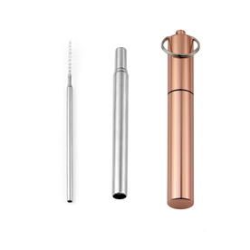 Stainless Steel Telescopic Straws | M&W Rose Gold