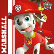 Paw Patrol - Marshall Ready To Rescue Canvas
