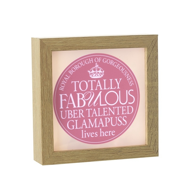 Light Up Frame Fabulous Glamapuss By Heaven Sends