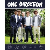 One Direction Navy Mini Poster