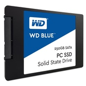 WD 250 GB 2.5-Inch Internal Solid State Drive Blue