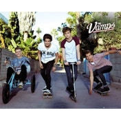 The Vamps Band Mini Poster