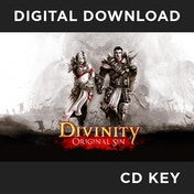 Divinity Original Sin Game PC CD Key Download for Steam