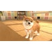 Little Friends Dogs & Cats Nintendo Switch Game - Image 5