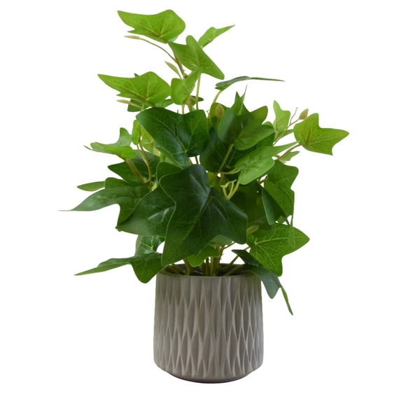 Faux Ivy Leaves Green in Cement Pot Real Touch