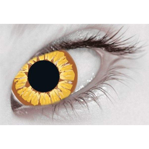 Golden Vampire 1 Day Halloween Coloured Contact Lenses (MesmerEyez XtremeEyez) - Image 3