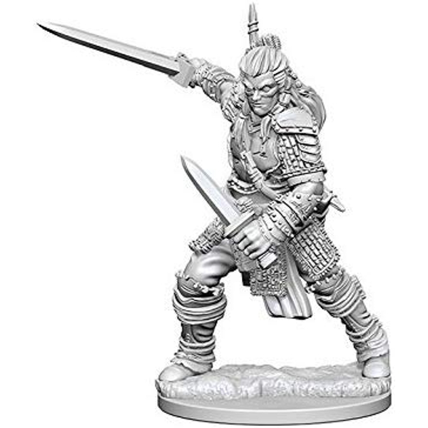 Pathfinder Deep Cuts Unpainted Miniatures (W1) Human Male Fighter