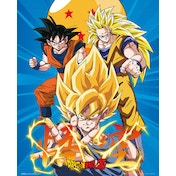 Dragon Ball Z 3 Gokus Mini Poster