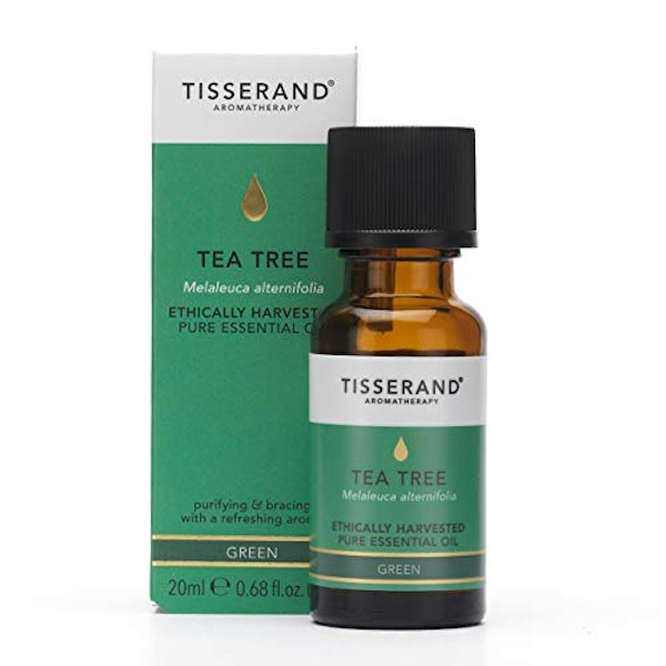 Tisserand Aromatherapy Tea Tree Essential Oil Ethically Harvested 20ml