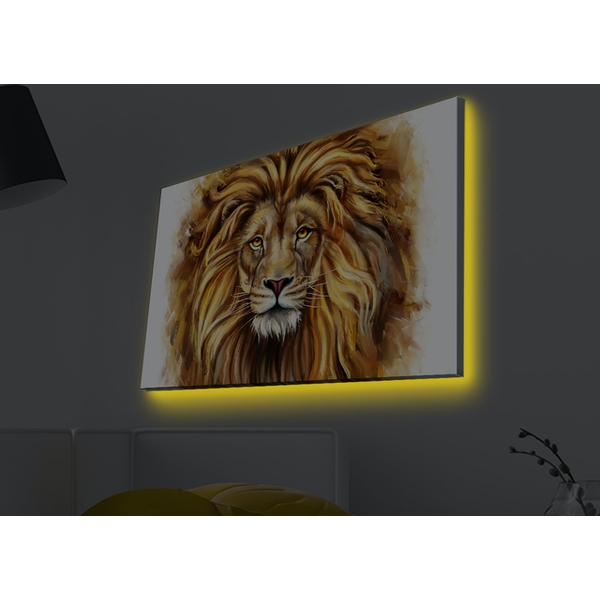 4570MDACT-021 Multicolor Decorative Led Lighted Canvas Painting