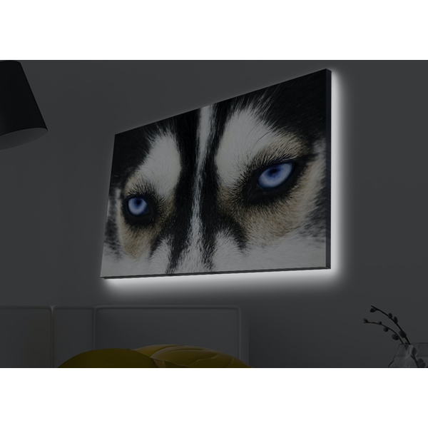 4570MDACT-039 Multicolor Decorative Led Lighted Canvas Painting
