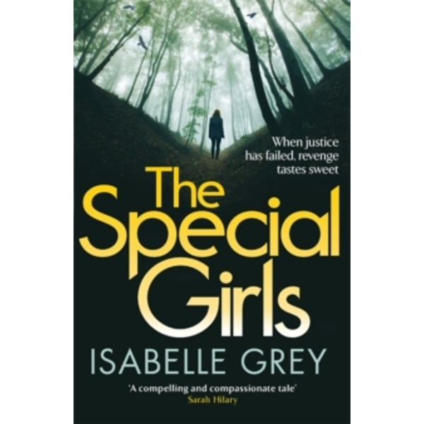 The Special Girls : An addictive thriller that will keep you guessing until the last page