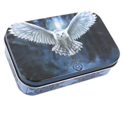 Awake your magic Tin by Anne Stokes