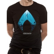 Aquaman Movie - Logo And Symbol Men's Small T-Shirt - Black
