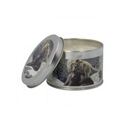Winter Breeze  (Pack 6) Snow Kisses Tin Candle